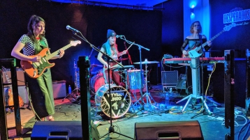 Wyvern-Lingo-Gig-review-Jan-2018.jpg